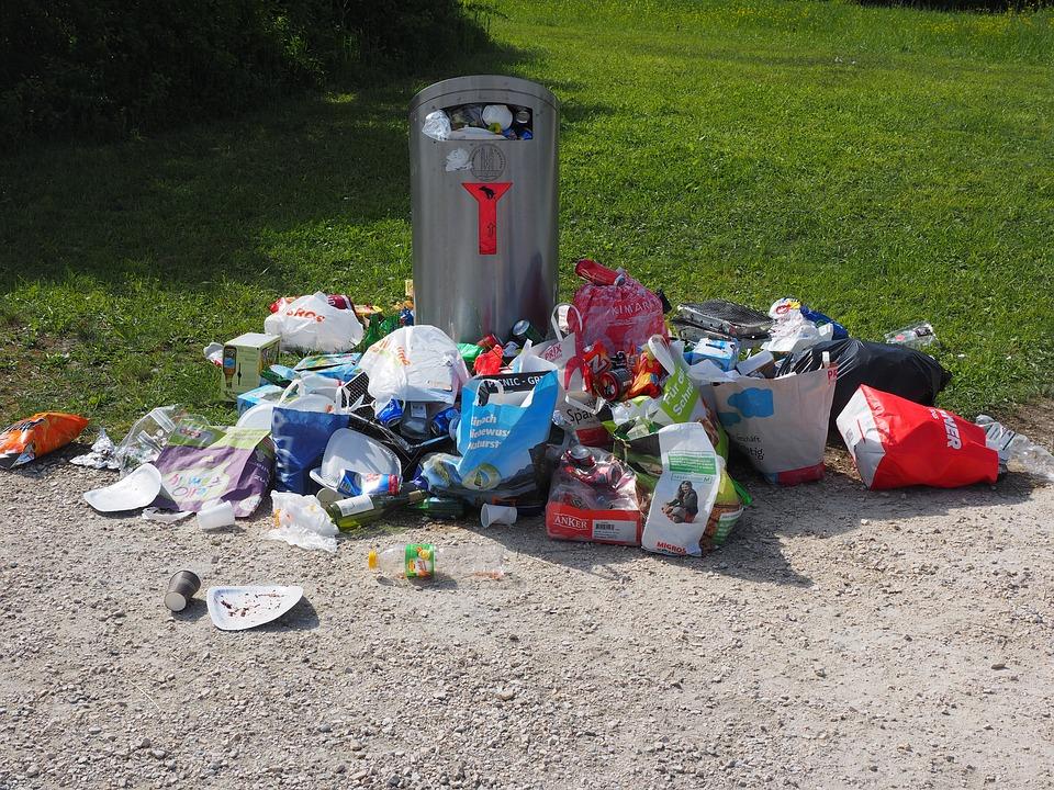 Majorarea AMENZILOR pentru aruncarea gunoiului pe strada. Cine propune inasprirea legii?