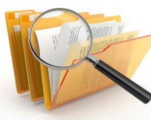 Structura raportului de audit public intern