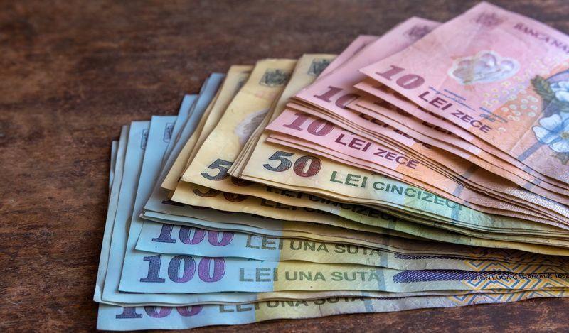 Investitiile nete in economie, in crestere