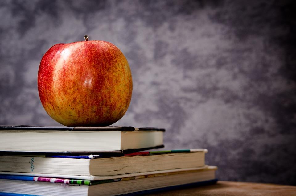 Crearea unui spatiu european al educatiei, pana in anul 2025