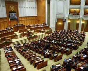 Guvernul pregateste, pentru vacanta parlamentara, o ordonanta de diminuare a datoriilor din aparare