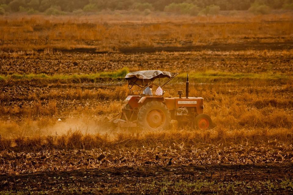Locuri de munca sezoniera in domeniul agricol in Spania