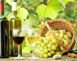 Institutiile publice ar putea accesa fonduri europene de 50 milioane de euro pentru promovarea vinurilor
