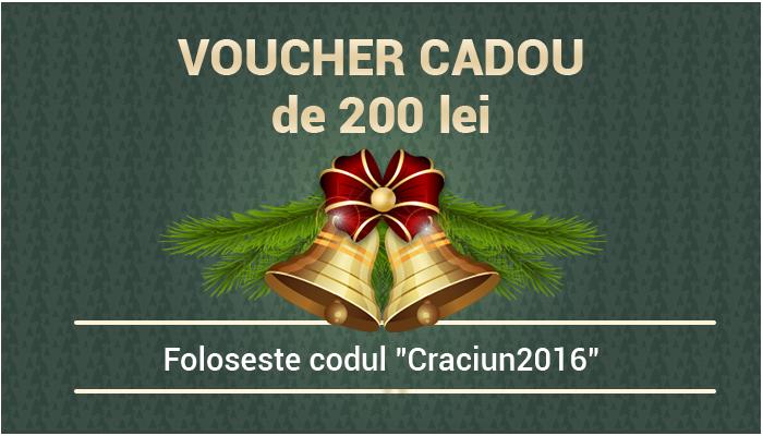 Cadou de Craciun: VOUCHERE de 200 de lei pentru cititorii InfoInstitutii