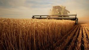 Fisa de POST pentru agent agricol