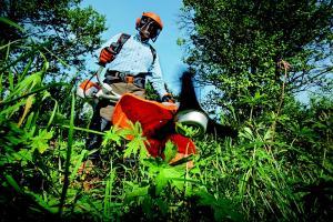 Fisa de post pentru un muncitor plantatii si amenajare zona verde
