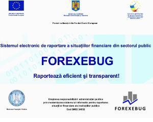 ForExeBug: Ghid complet de utilizare pentru Institutiile Publice