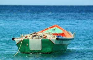 Proiect de LEGE - Conditii mai bune pentru lucratorii din sectorul pescuitului maritim