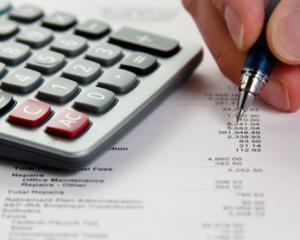 Realizarea planului de conturi pentru anul 2013