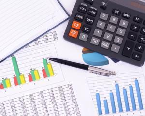 Bugete diminuate pentru mai multe institutii, in urma rectificarii bugetare